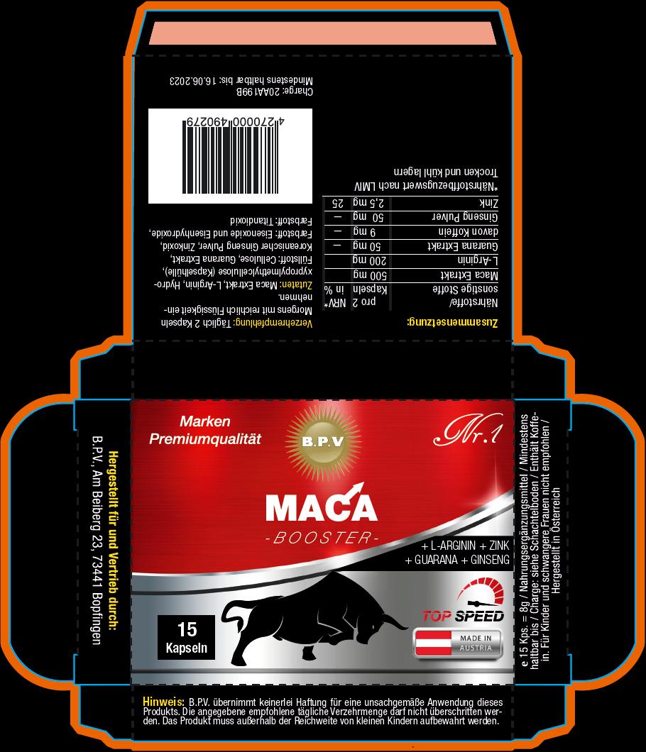 Maca-Faltschachtel
