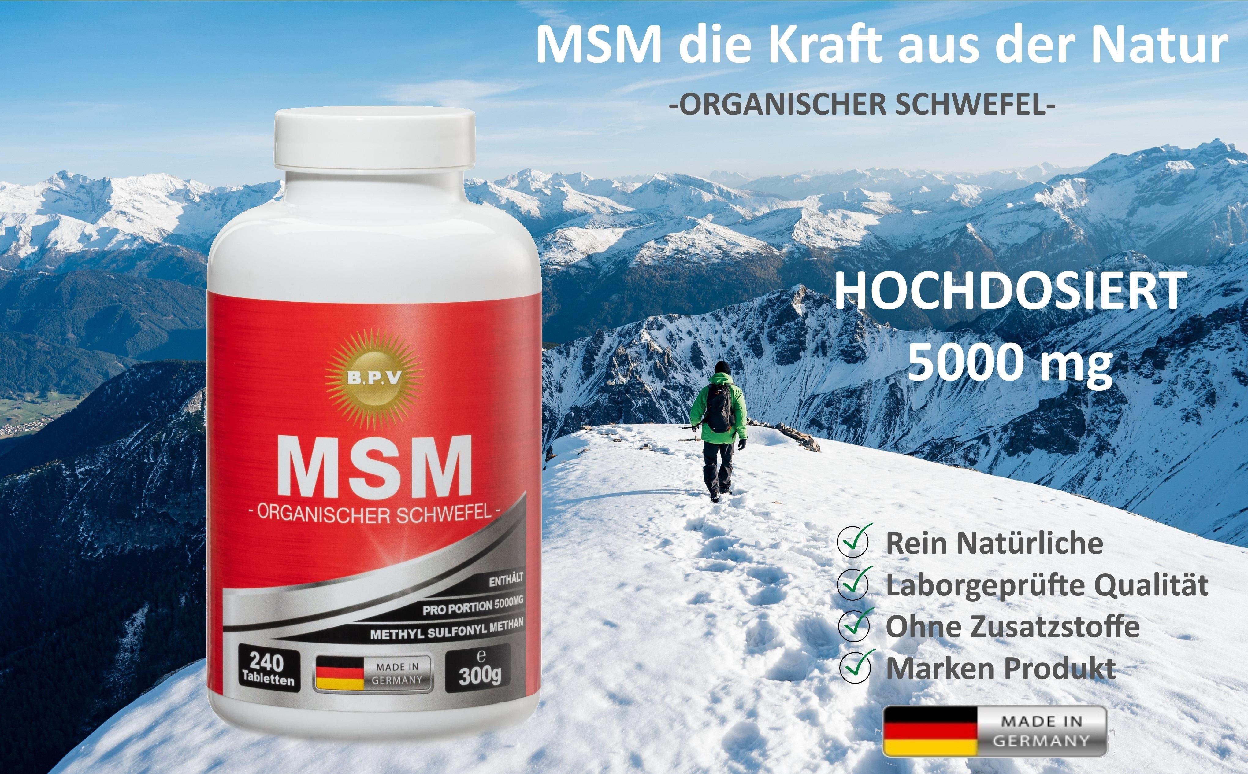 msm-240